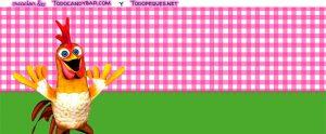 Kits de nenas granja zenon rosa