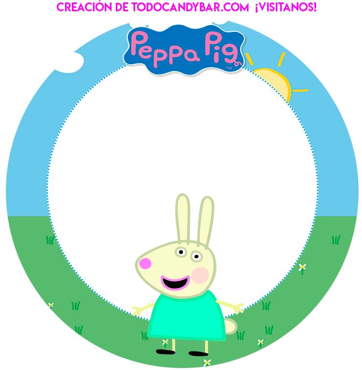 Birthday party Peppa y George pig